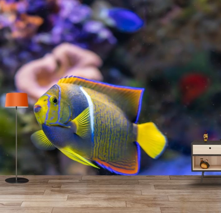 Blue Yellow Fish Wallpaper Mural