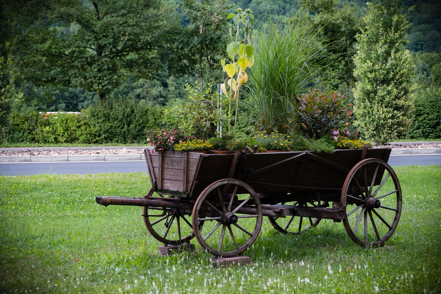 Wagon Of Flowers Wallpaper Mural