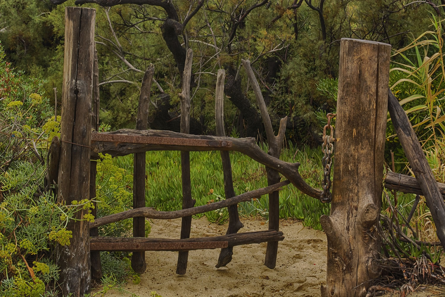 Wooden Gate Wallpaper Mural